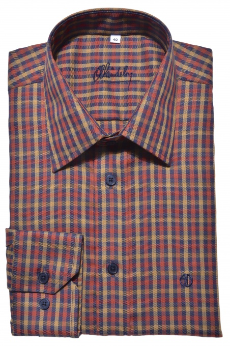 Casual checkered Slim Fit shirt